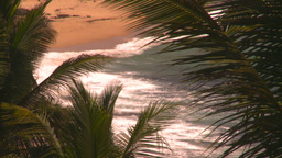 HD2008-8-14-24 San Juan beach surf palms Footage