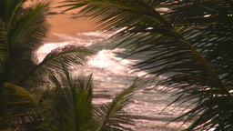 HD2008-8-14-24 San Juan beach surf palms Stock Video Footage
