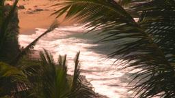 HD2008-8-14-24 San Juan beach surf palms Stock Video Footage