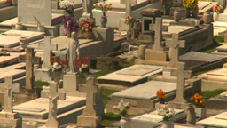 HD2008-8-14-28 San Juan cemetary Stock Video Footage