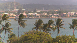 HD2008-8-14-48 San Juan harbor palms breeze Stock Video Footage