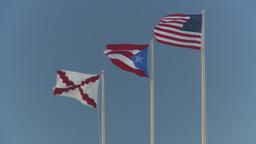 HD2008-8-15-11 San Juan flags Footage