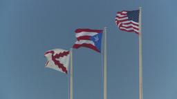 HD2008-8-15-11 San Juan flags Stock Video Footage