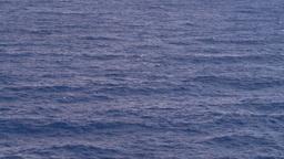 HD2008-8-17-15 open ocean Stock Video Footage