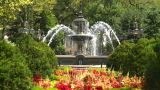 New York City Hall Park Fountain stock footage