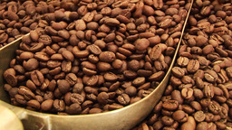 Coffee Beans 4 Footage