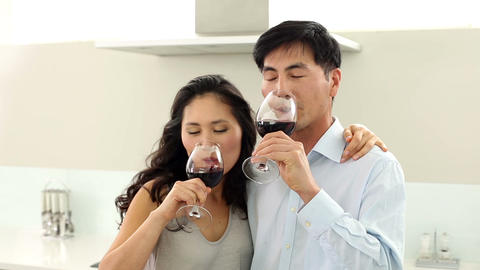 Couple drinking red wine and smiling at camera Footage
