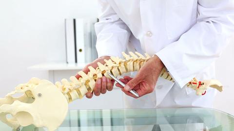 Doctor explaining skeleton model using pen to poin Live Action