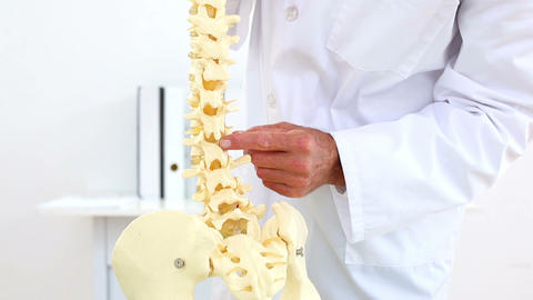 Doctor Explaining Skeleton Spine To Camera stock footage