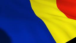 Romanian National Flag stock footage