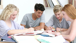 Group of adolescents studying together Live Action