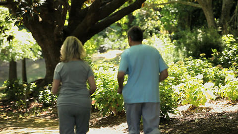 Elderly couple jogging in the forest Footage