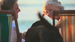 Elderly couple joined by a dog on the beach Footage