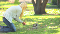 Young woman feeding a squirrel Footage
