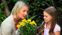 Mother and daughter smelling some yellow flowers Footage