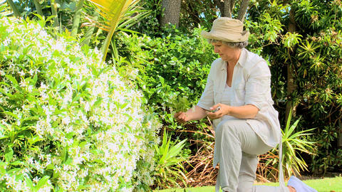 Retired Woman Gardening stock footage