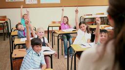 Teacher choosing a pupil Footage