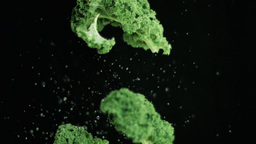 Broccoli being thrown upwards in super slow motion Live Action