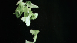 Lettuce thrown upwards in super slow motion Live Action