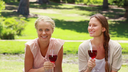 Two friends enjoying wine as they both smile and l Footage
