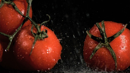 Raindrops in super slow motion falling on tomatoes Footage