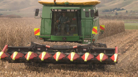 maize harvester at end of row and turn Footage