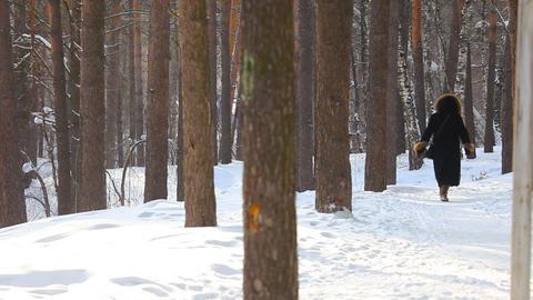Winter walking Stock Video Footage