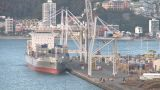 Containership Loading In Timelapse stock footage