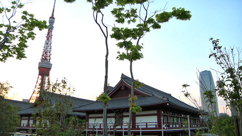 Tokyo Tower Traditional Japanese Houses 03 Footage