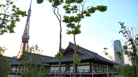 Tokyo Tower Traditional Japanese Houses 03 Stock Video Footage