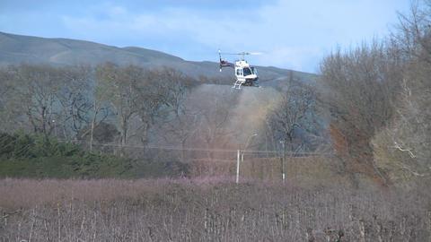 helicoper sprays fungicide Stock Video Footage