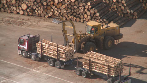 log truck unloaded Stock Video Footage