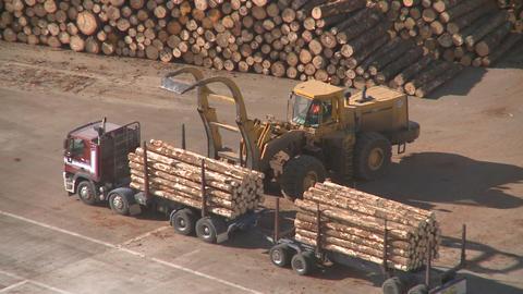 log truck unloaded Stock Video Footage