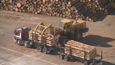 log truck unloaded Footage