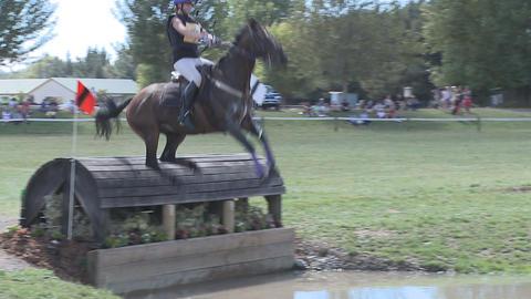 horse hesitates at water jump Stock Video Footage