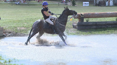 horse hesitates at water jump Footage