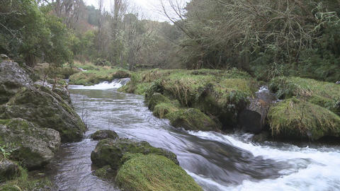 fast flowing stream Footage