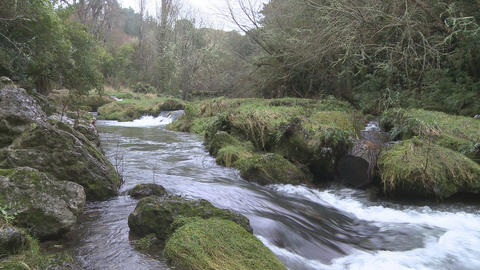 fast flowing stream Stock Video Footage
