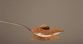 Brown nut falling in super slow motion in a spoon filled with powder Live Action