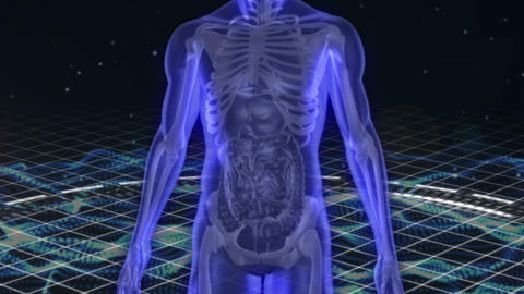 Scan of revolving human figure Stock Video Footage