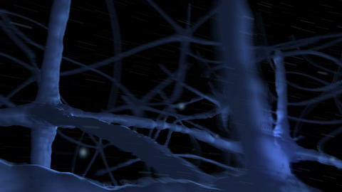 Neurons pulsing through blue nervous system Animation