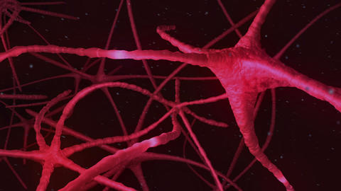 Neurons pulsing through pink nervous system Animation