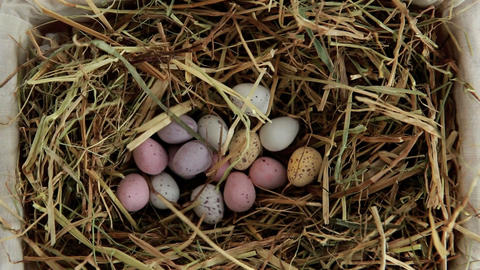 Sugar easter eggs falling in the straw Live Action