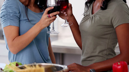 Friends relaxing with red wine while the meal is being cooked Live Action