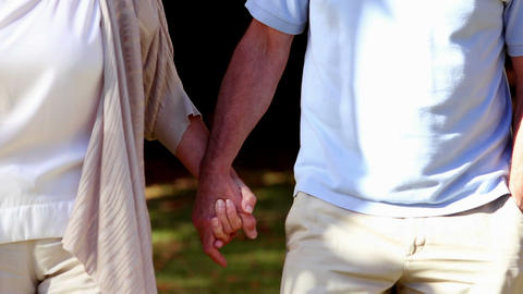 Mature couple walking hand in hand Footage