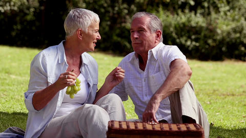 Elderly couple eating grapes at a picnic Footage