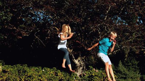 Cheerful siblings bouncing on a trampoline Footage