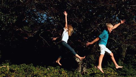 Siblings jumping on a trampoline Footage