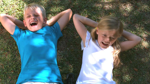Smiling siblings relaxing on the grass Footage