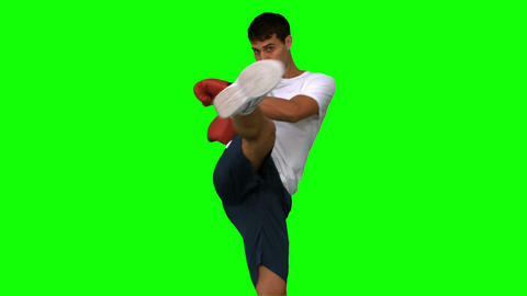 Boxer performing a high kick on green screen Live Action